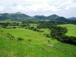 72 Hectare Gem, Ideal for Development just 9 km from Center of Penonome