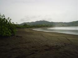 58 Hect. 500 Meters Beachfront, Playa Ostional, Azuero Peninsula