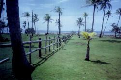 Caribbean Beach Property