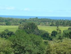 Ocean View- 30 ACRES, Subdividable, Azuero Peninsula
