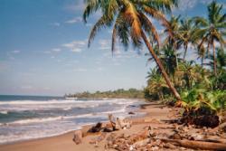Caribean Beachfront Property