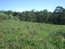Nearly 2 Acres of property for sale in Highlands of Chiriqui