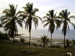 2500 m2, 25 meters beachfront lot