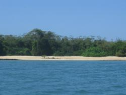 Beach Front Lot for sale on Viveros Resort Island of the Las Perlas Archipelago
