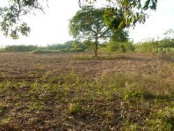 2.7 de hectareas cerca de la playa en Juan Hombron