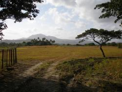 13 HA comprised of 2 adjacent farms for sale very near Bustling town of Penonome