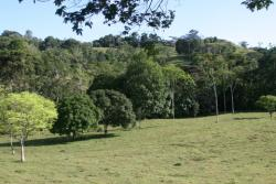 ** PRICE REDUCED ** 88 HA in the Mountains of the Cocle