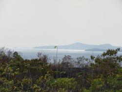 139 hectares on Azuero peninsula (Torio)