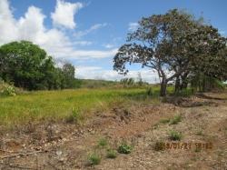 154.43 hectares in San Lorenzo, Chiriquí