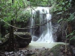 REDUCED!!! titled land with waterfall in la laguna