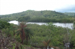 3 hectares titled waterfront with boat ramp near La Victoria