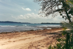 Beach front lots for sale on Paunch Beach, Isla Colon