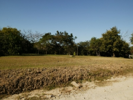 Lot in Costa Esmeralda #163