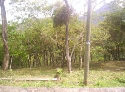 Mountain View Lot