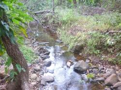 10 hectares on the road to Altos del María - DRASTICALLY REDUCED PRICE!