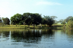 Land on Lake Gatun