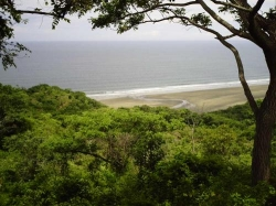 120 Hectares, 1.3 kms ocean front, close to playa venao