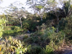 Lot on El Espino Area, near La Chorrera, at 15 minutes from the Panamerican Highway on paved road.