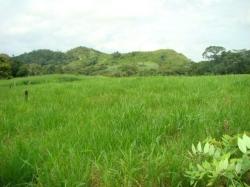 Land for Development of Special Interest homes in Arraijan