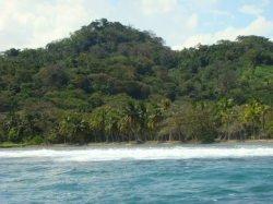 47 HA of land with Stunning Carribean Views, and primary forest
