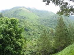 Lot with valley view and house plans and all permits in Altos del Maria