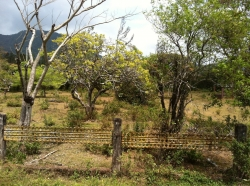 Prime Commercial Lot in Downtown El Valle