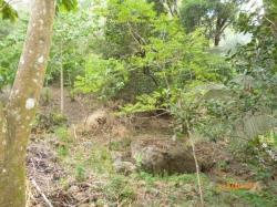 Lot with creek in Altos del Maria