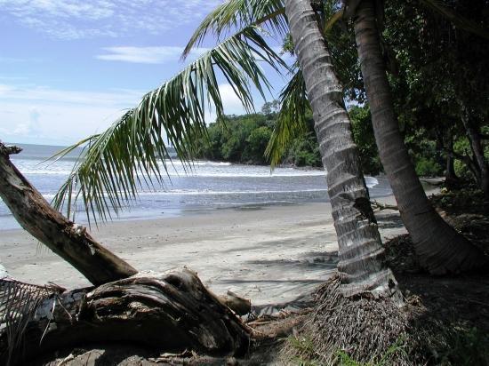bocachicaplanta_1368456086 Panama Plantation Houses on
