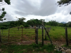 House on a 1 1\2  Hectare Lot