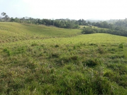6.6 HA of rolling hills with live water for sale in Chorrera