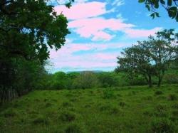 18 hectares titled land in Dos Rios Abajo, Dolega