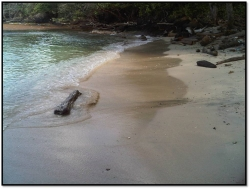 Titled Caribean Oceanfront land for sale near Portobello Colon