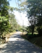 LAND FOR SALE IN CERRO AZUL