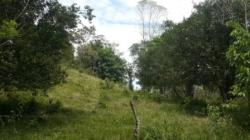 8 hectares in Gariche