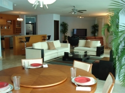 Furnished Rental Unit in the City of Panama