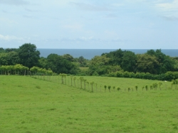 Affordable corner lot, Pocri, Azuero Peninsula, walk to the beach