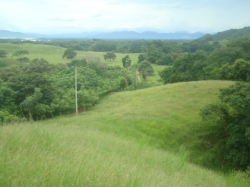 2.5 acres with ocean views, power, water, creek, ocean views, 6kms from Playa Venao