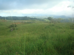 Small 17 AcreFarm, Ocean View, utilities, title, cooler weather and asphalt road, Tonosi, Azuero Peninsula