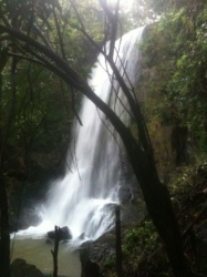 Waterfall Property, 25 acres, San Francisco, Veraguas