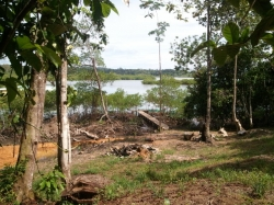 1 HA parcel of titled, ocean-front, land, with a dock, for sale in Bocas del Toro