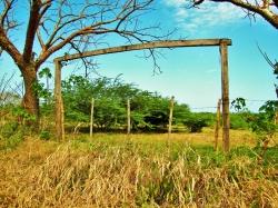 Las Tablas Property - 1 HA