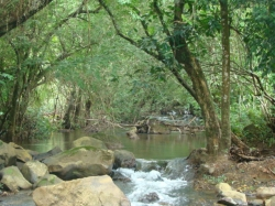 10 acres, titled, river, san francisco, veraguas, reduced by half price