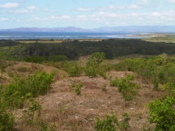 Great Views, Affordable lot close to Playa Venao, Pedasi 1306 mt2 titled