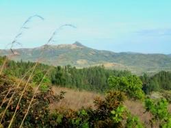 2.6 hectares mountain farm near  Santa Fe