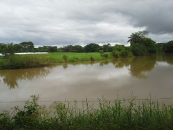 Turn key Farm for sale in Chiriqui