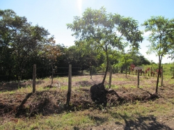 Building lot with a creek in Potrerillos Arriba