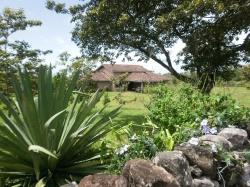 Los Nances Residential Development in Altos Boquete is for sale!