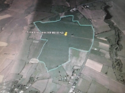 36-hectare farm betweeen David and Barqueta with great potential
