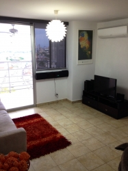 2 Bedroom Apartment with income rental through January 2017 available for purchase