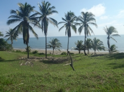 FOR SALE  * 4-acre Titled Pacific Ocean Property * 125 linear meters (410 feet) Beachfront